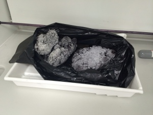 Comets in fume cupboard